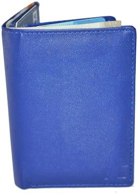 AL Men Pu Card holder - Blue , Pack of 1