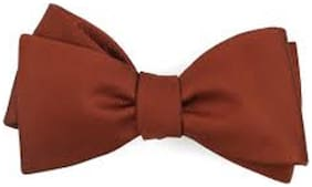 Pack of 1Brown  Bow Tie