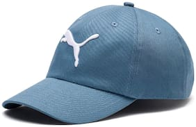 Puma Men's Baseball Cap (2241603_Bluestone-Big Cat_Adult)