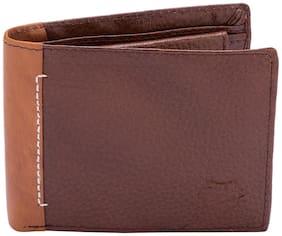 Spykar Men Brown Leather Bi-Fold Wallet ( Pack of 1 )