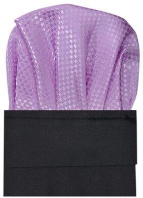 TieKart Polyester Pocket Square - Purple