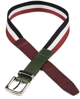 U.S. Polo Assn. Men Multi Canvas Belt (Size: 38 , Pack of 1 )