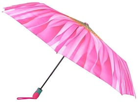 Winty Free size Umbrellas - Assorted
