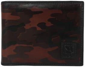 Woodland Men Brown Leather Bi-Fold Wallet ( Pack of 1 )