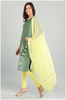 Aurelia Women Viscose Printed Straight Kurta - Green