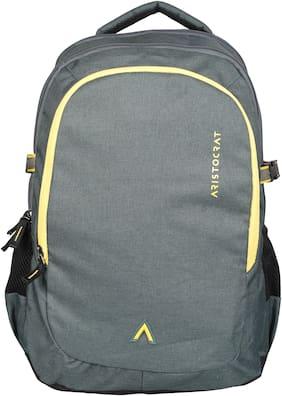 ARISTOCRAT Laptop Backpack