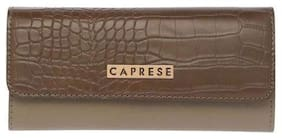 CAPRESE Women Green Leather Wallet