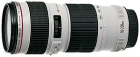 Canon EF 70-200 mm f/4L USM Lens (Black & White)