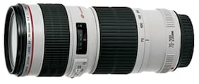 Canon EF 70-200 mm f/4L USM Lens (Black & White)
