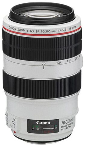 Canon EF 70 - 300 mm f/4-5.6L IS USM Lens (White)