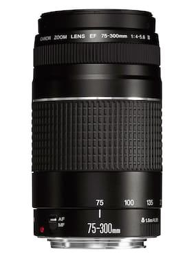 Canon EF 75-300mm f/4.0-5.6 III Lens
