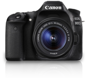 Canon EOS 80D Kit (EF-S18-55 IS STM) 24.2 MP DSLR Camera (Black)