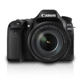 Canon EOS 80D (EF-S18-135 IS USM) 24.2 MP DSLR Camera (Black)