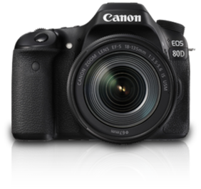 Canon EOS 80D Kit (EF-S18-135 IS USM) 24.2 MP DSLR Camera (Black)