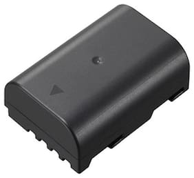 Panasonic DMW-BLF 19 Rechargeable Lithium ion battery
