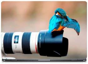 Gallery 83  - Bird on Camera Laptop Decal, laptop skin sticker 15.6 inch (15 x 10) Inch g83_skin_0299new