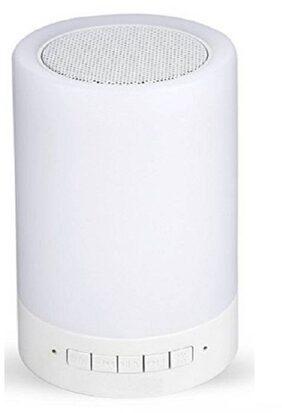 DS VISION Bluetooth Speaker ( White )
