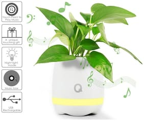 Pinnaclz Music Flower Pot with Bluetooth enabled Speaker (Assorted)