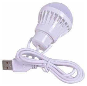 ROEID USB Bulb