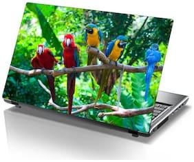 Sticker Studio parrets Laptop Skin & Sticker (PVC Vinyl Size- 38.1 cm (15 inch) x 25.4 cm (10 inch))