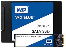 WD 250 GB Internal SSD WDS250G2B0B SATA 6.0 Gbps Internal SSD