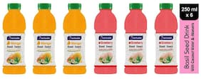 Aactuala Combo of Basil Seed Drink- Mango 250ml,Strawberry 250 ml (Pack of 6)