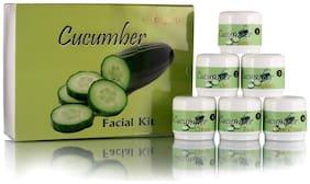 Adidev Herbals Purifying Cucumber Facial Kit 250 g