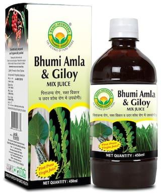 Basic Ayurveda Bhumi Amla & Giloy Mix Juice (Wheat Grass Yukta) 450 ml