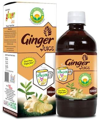 Basic Ayurveda Ginger Juice 500ml