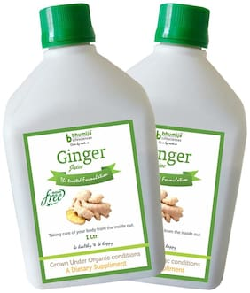BHUMIJA LIFESCIENCES Ginger Juice (Sugar Free) 1 L(Pack of 2)