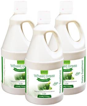 BHUMIJA LIFESCIENCES Wheat Grass Juice (with Aloevera & Amla) Sugar Free 1 L (Pack of 3)