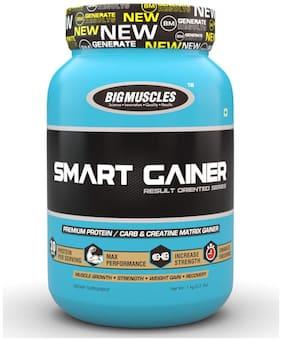 Bigmuscles Nutrition Smart Gainer 1 kg (Malt Chocolate)