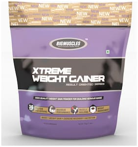 BIG MUSCLES Xtreme Weight Gainer 11 Lbs