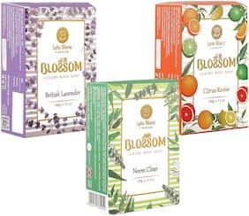 BLOSSOM Soaps Neem Clear for Men & Women 100g Pack of 3