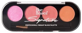 Blue Heaven Signature Blush on Palette Shade 2(8 g) (Pack of 1)
