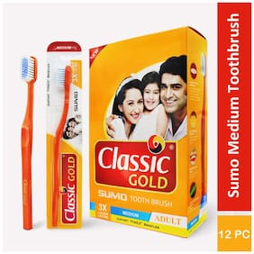 Classic Gold Sumo Medium Toothbrushes Pack Of 12 With Anti Bacterial Cap