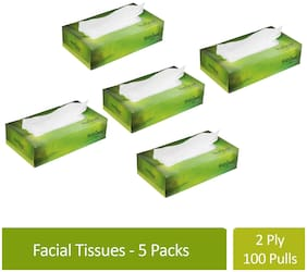 Freshee 100 Sheets 2 Ply Pack Of 5 Facial Tissue Paper/Bacteria Resistant/Hygience And Fresh Tissue Made With 100% Virgin Fibre/Value Plus Range Of Disposable Tissue