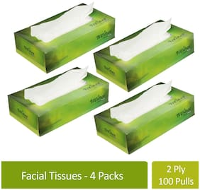 Freshee 100 Sheets 2 Ply Pack Of 4 Facial Tissue Paper/Bacteria Resistant/Hygience And Fresh Tissue Made With 100% Virgin Fibre/Value Plus Range Of Disposable Tissue