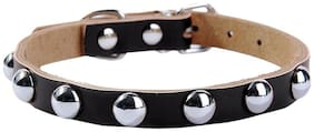 Futaba Adjustable Rivet Studded Leather Dog Collar Black-S
