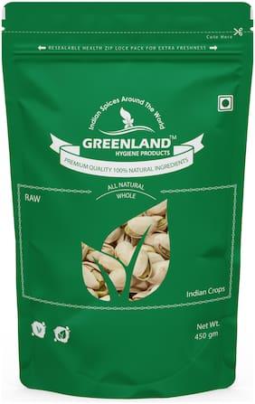 GREENLAND Salted Pistachios (Pista) 450 gm -Premium Grade