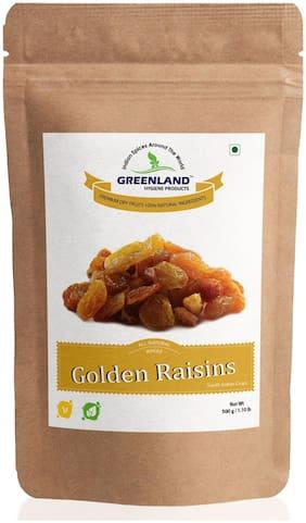 GREENLAND Golden Raisins (Dried Grapes) Kismis 500gm -Premium Grade