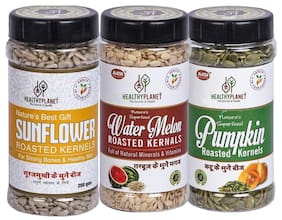 Healthy Planet Roasted Seeds Combo Pack Of 3 (Pumpkin Watermelon Sunflower) Seed 750g