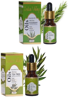 Indus Valley Rosemary + Tea Tree Oil For Healthy Hair And Scalp- Combo Pack Of 2
