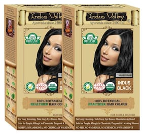 Indus Valley 100% Organic Botanical Indus Black - One Touch Pack - 2 Set - Hair Color