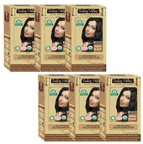 Indus Valley 100% Botanical 100% Organic Indus Black Hair Color One Touch Pack (Pack of 6)