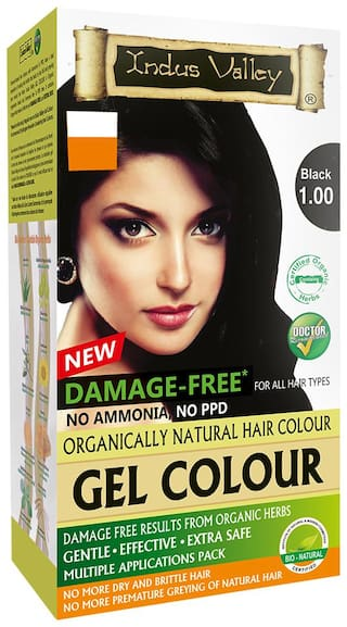 Buy Indus Valley Best Hair Dye Gel Black 1 0 For Grey Coverage Online At Low Prices In India Paytmmall Com