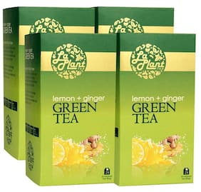 LaPlant Lemon & Ginger Green Tea - 100 Tea Bags