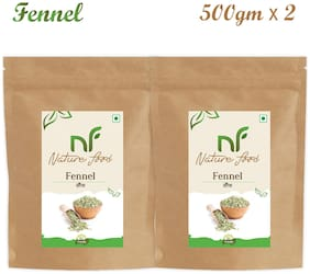 Nature Food Good Quality Fennal / Saunf Pack of 2 (500g x2)