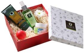 Organic Harvest Gift Box (Oil Control Face Wash 100g, Neem Tulsi Toner 125ml, Daily Day Cream 50g & Organic Strawberry Lip Balm 10g)