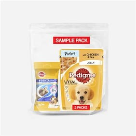 Pedigree Sample Pack  Puppy Gravy Pouch 100 g (Pack of 2) +  Dentastix Small Breed Oral Care (110g)